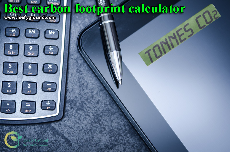 best carbon footprint calculator