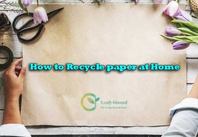 How to Recycle paper at home