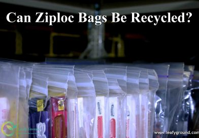 Can Ziploc Bags Be Recycled?