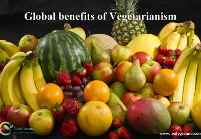 Global benefits of Vegetarianism